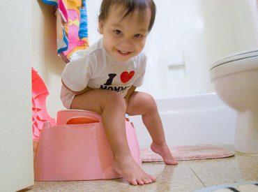 Toilet/Potty Training